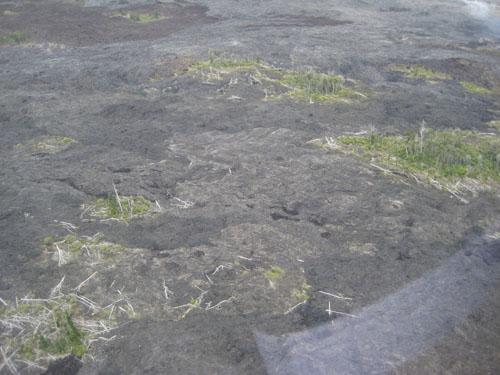 037-lava flow